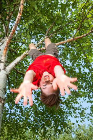 kid-hanging-tree-pretending-falling-low-angle-view-cute-teen-boy-wearing-red-tshirt-upside-down-looking-camera-74651576